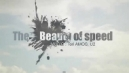 The Beauty of Speed - 11th January, 2011