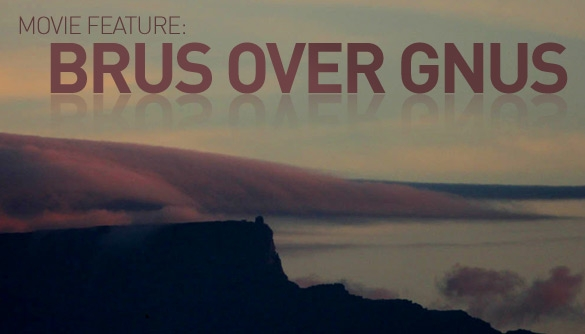 BRUs over GNUs | Working Hard for Waves