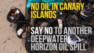 No Oil In Canary Islands Petition | Clean Ocean Project Campaign